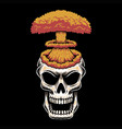 skull head nuke vector image vector image