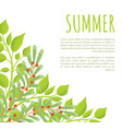 summer poster and green bushes with red berries vector image