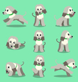 Cartoon character afghan hound dog poses set vector image