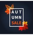 Autumn fall sale vector image