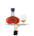 bottle of cognac and glass on tray vector image
