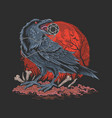 crow bird in dark night vector image vector image