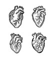 heart human icon set hand drawn style vector image vector image