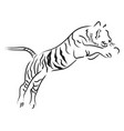 tiger jump vector image vector image