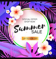violet tropical summer salepalm leaves plants vector image vector image