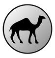 Camel button vector image