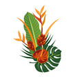 tropical bouquet elegant floral vector image