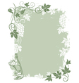 Background grape vines vector image