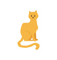 cute cat or kitten cartoon character icon flat vector image vector image