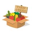 Organic food basket vector image