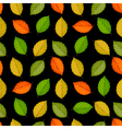 Seamless pattern with colored leaves on black vector image vector image
