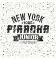 Emblem junior sport team from New York vector image vector image