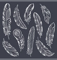 indian feather set hand drawn vector image vector image