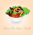 Isolated Vegetables Salad Bowl vector image vector image