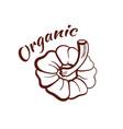 organic monochrome emblem vector image