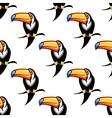 Seamless pattern of a toucan with a big bill vector image vector image