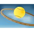 Tennis racket and balls vector image
