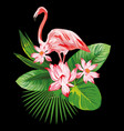tropical composition pink flamingo flowers eaves vector image vector image