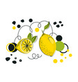 abstract hand drawn lemon vector image