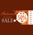 autumn sale template banner vector image