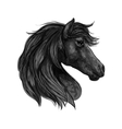 Black horse head profile portrait vector image vector image