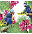 Exotic tropical card with parrot birds and flowers vector image vector image