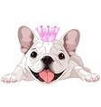 Royalty bulldog vector image vector image