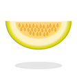 Slice of galia melon isolated on white background vector image