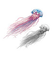 hand drawn sketch jellyfish in color isolated vector image vector image