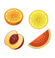 ripe orange peach watermelon fruits 3d citrus vector image