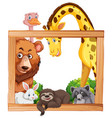 wooden frame with wild animals vector image