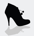 shoes for women with details vector image