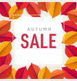 autumn sale flyer template bright colorful fall vector image