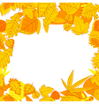 Autumnal seasonal frame vector image