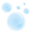 Bubbles on a white background vector image vector image