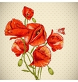 Bunch of Beautiful Red Poppy vector image vector image