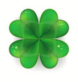 clover shamrock realistic saint patricks day vector image vector image