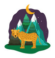 cute cheetah in the landscape on the night vector image