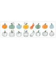 cute pumpkin set gourd vector image