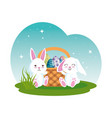 cute rabbits couple with easter egg painted in vector image vector image