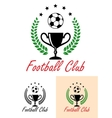 Football Club Championship emblem or icon vector image vector image