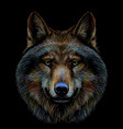 graphic color portrait a wolfs head vector image vector image