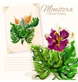 Monstera leaves with hibiscus flowers design vector image vector image