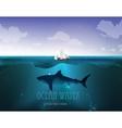 shark underwater vector image vector image