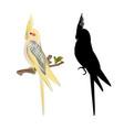 yellow cockatiel cute tropical bird funny parrot vector image vector image