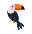 cute toucan bird exotic tropical fauna element vector image vector image