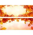 autumn banners with orange leaves set vector image vector image
