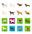 dog breeds cartoonflat icons in set collection vector image vector image