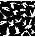 Doves and pigeons seamless pattern black and white vector image vector image