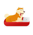 funny dog with laptop rounds its tail up vector image vector image